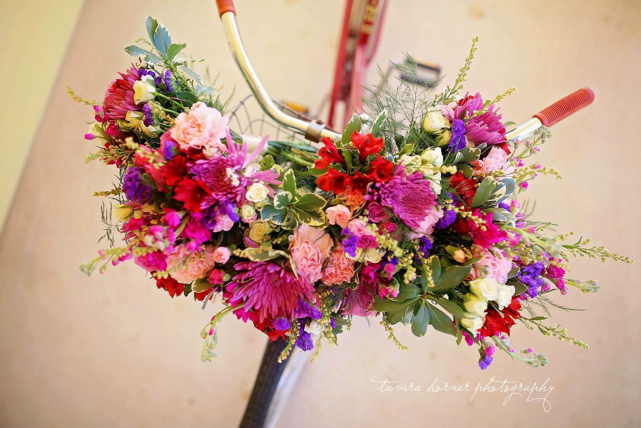 bokchito flowers